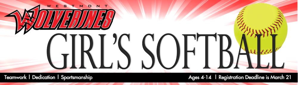 website banner.softball