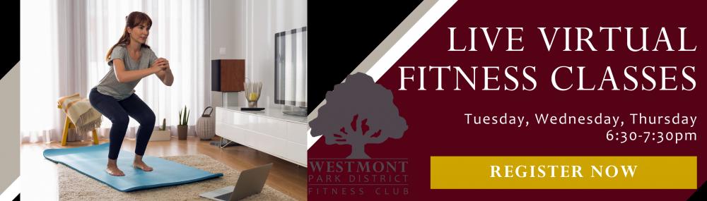Live Virtual Fitness website banner