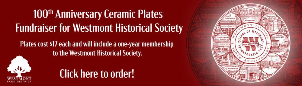 100th Anniversary Plate